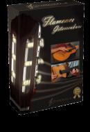 Flamencogitarre lernen